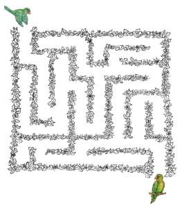 Danao's maze