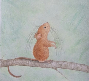Illustrated of a Banahaw tree mouse