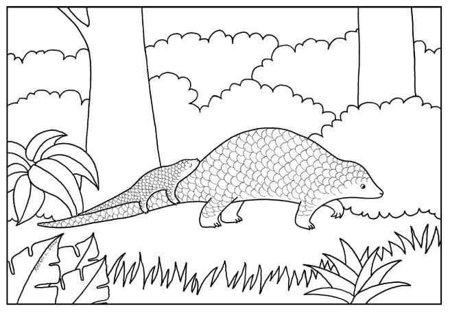 Pangolin mom and pangopup colouring page