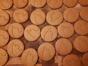 Pangolin cookies